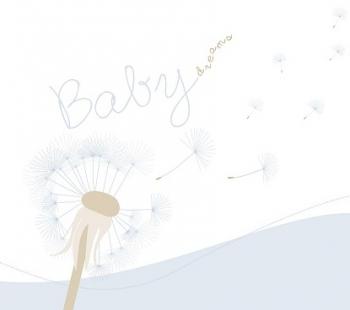 Babykarten.Phobatec Gbr Babykarten Blau Mit Passepartout Fur 10x20cm